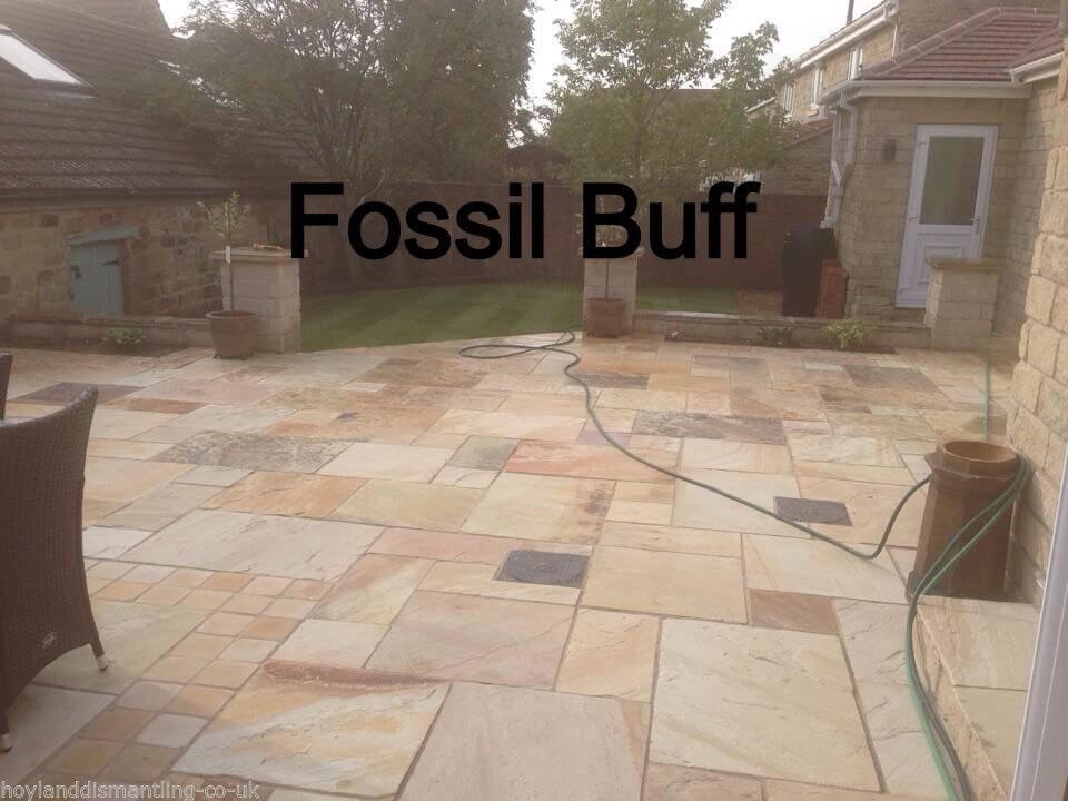 first image for Fossil Buff